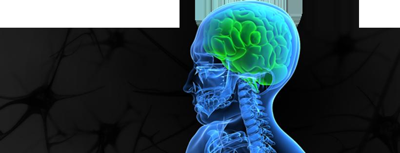 neurosurgery_banner-new
