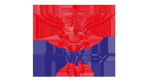 logo-feniks
