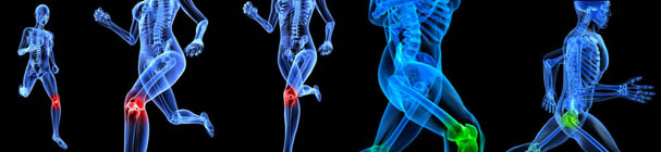orthopedicBanner
