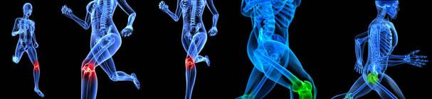 orthopedicBanner