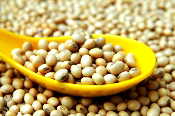 Абсолютно научно е доказано, че соевите зърна съдържат много повече витамин В, в сравнение с всяка друга храна