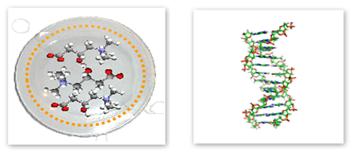 patches-molekyli