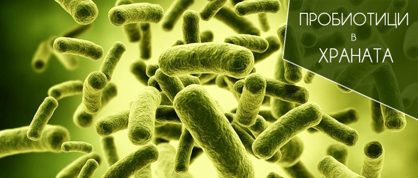 Най-голямо количество от полезните микроорганизми се съдържат в млечно-киселите продукти